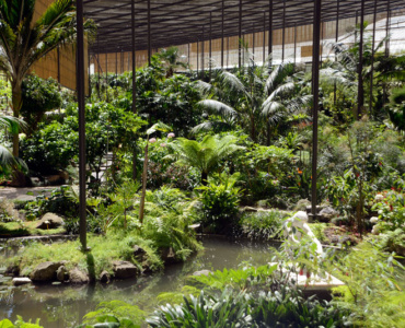 Lisbon Greenhouse, an oasis in the city center